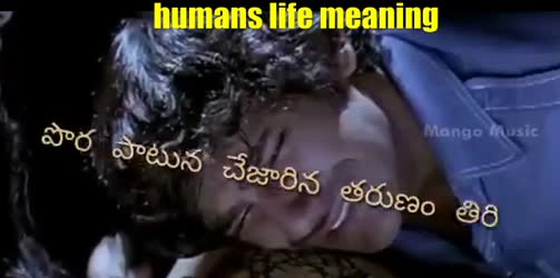 humans life meaning
