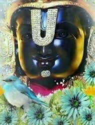 Adhi Venkatachala