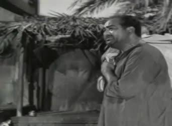Dhanameraa annitiki moolam